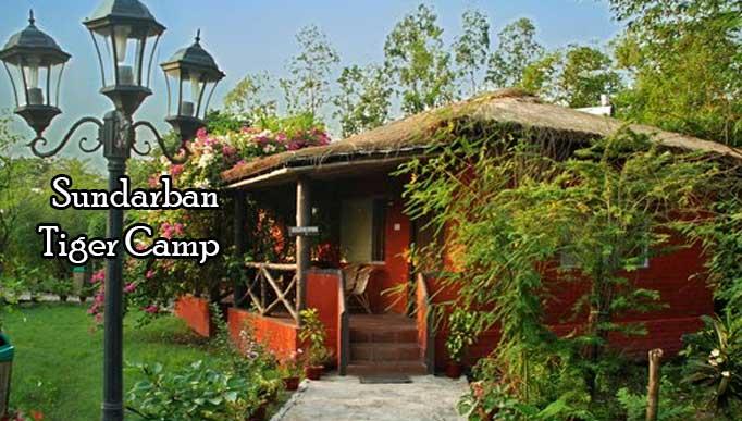 Sundarban Tiger Camp