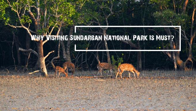 sundarbannationalpark