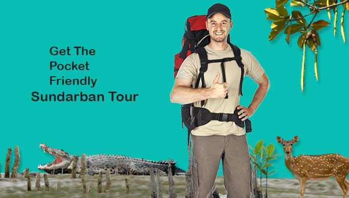 Pocket Guide to Explore Sundarban