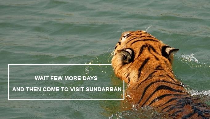 Visit Sundarban