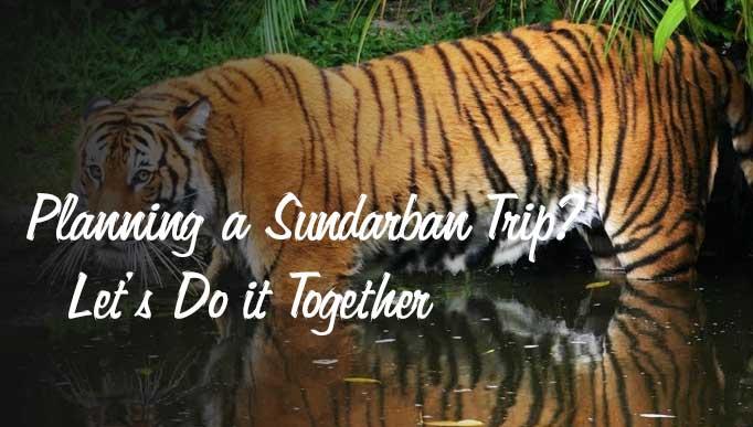 Planning a Sundarban