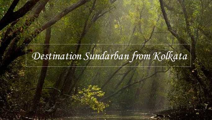 Destination Sundarban from Kolkata