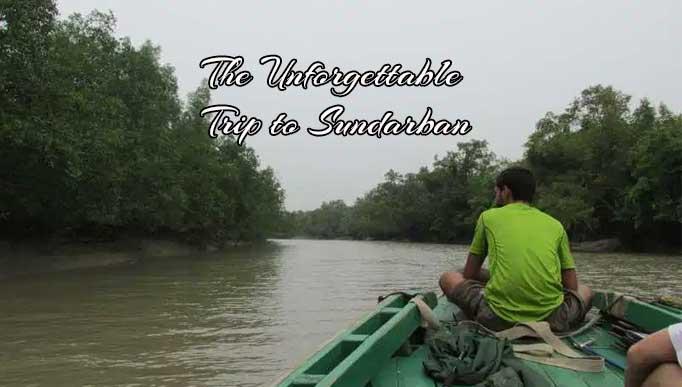 The Unforgettable Trip to Sundarban