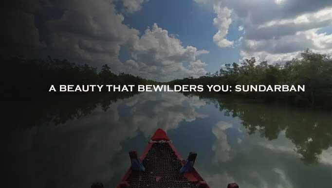 A Beauty That Bewilders You: Sundarban