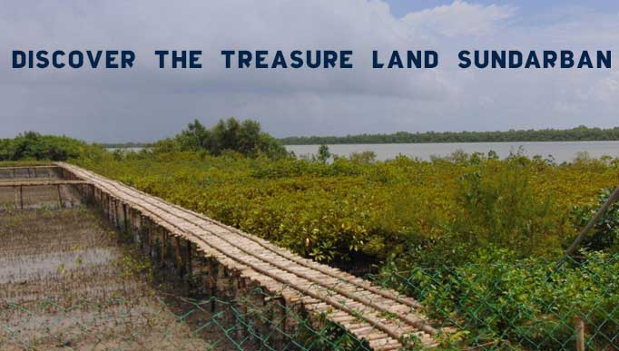 Discover the Treasure Land Sundarban