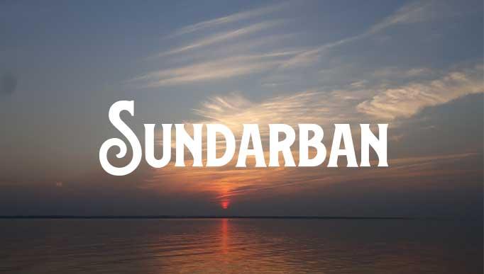 When Can You Go to Sundarban Again?