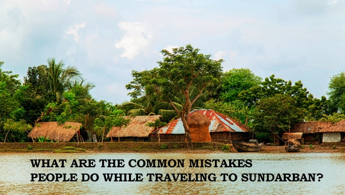traveling to Sundarban